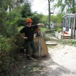 stump grinding peterborough