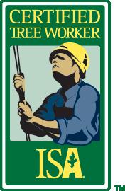 Certified Tree Worker